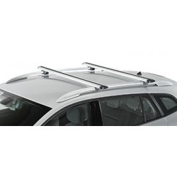Barras de techo Aluminio T. Rav4 Railing (Plata o Negro)